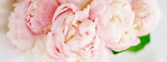 Beautiful Blush Pink Never Goes Out Of Fashion For Weddings